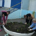 """Акція """"Зробимо Україну чистою - 2015"""""""